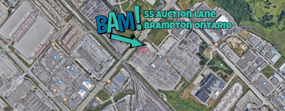 Brampton Auto Mart 55 auction lane brampton